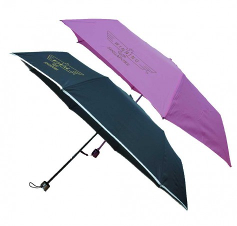 Lightweight Foldable Mini Umbrella